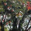 "Mountain Ash  Oil on Canvas  8"" X 24"""